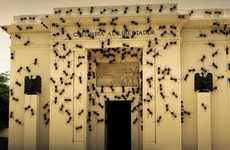 Insect-Clad Building Art