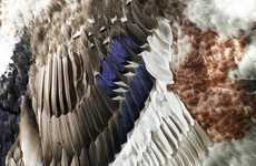 Feather Tapestry Artworks