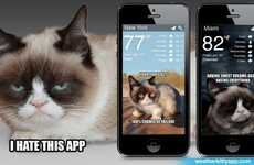 Feline Weather Forecast Apps