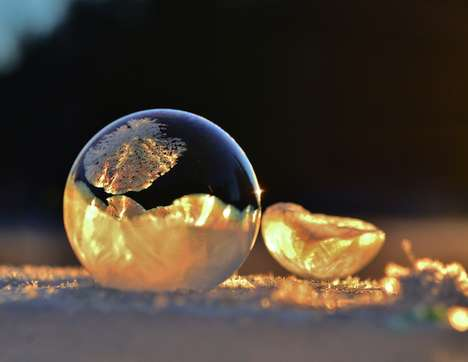 frozen in a bubble