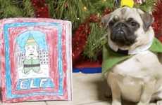 10 Pet Collective Parodies