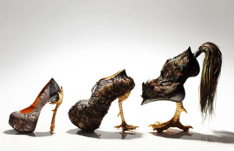 High-Heeled Avian Stilettos
