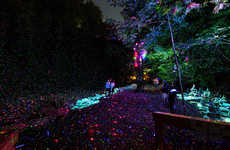 Enchanted Forest Installations