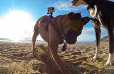 Canine Camera Mounts