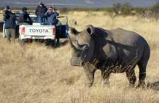 High-Tech Rhinoceros Anklets