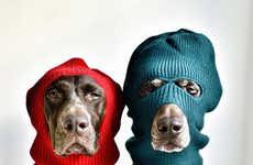 Normcore Doggie Fashions