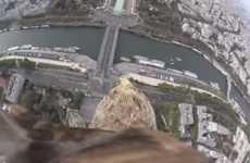 Eagle POV Videos