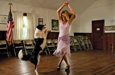 Doggie Dance-Offs