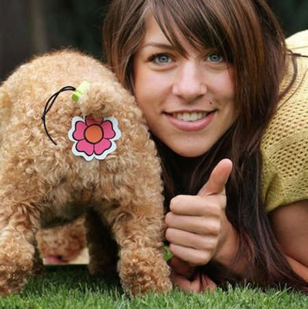 Pet Bum Covers -