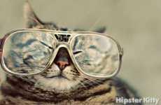 Too-Cool Feline Blogs