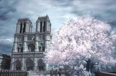 Soft Parisian Streetography
