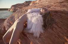 Blazing Sahara Desert Shoots